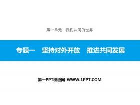 《专题一 坚持对外开放 推进共同发展》我们共同的世界PPT课件