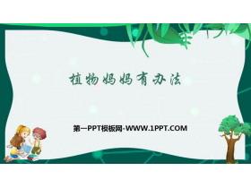 《植物妈妈有办法》PPT教学课件