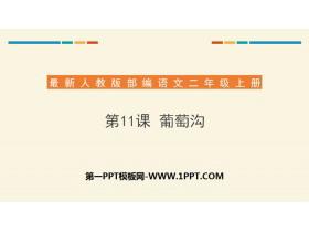 《葡萄沟》PPT下载