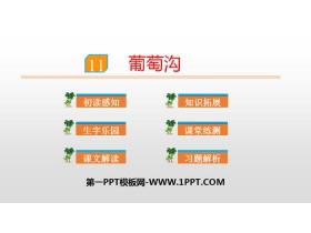 《葡萄沟》PPT课件下载