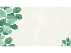 4张绿色水彩叶子PPT背景图片