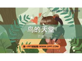 《鸟的天堂》PPT免费下载