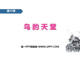 《鸟的天堂》PPT免费课件
