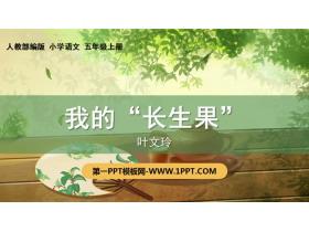 """《我的""""长生果""""》PPT免费下载"""