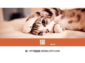 《猫》PPT免费课件