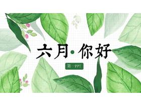 清爽水彩绿叶背景的《六月你好》必发88模板