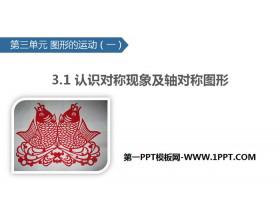 《认识对称现象及轴对称图形》图形的运动PPT