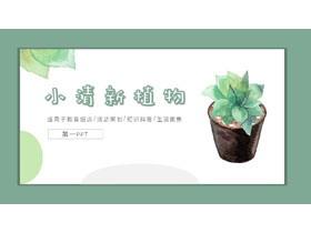 小清新水彩盆景植物背景必发88模板免费下载