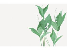 ���清新水彩植物�G�~PPT背景�D片