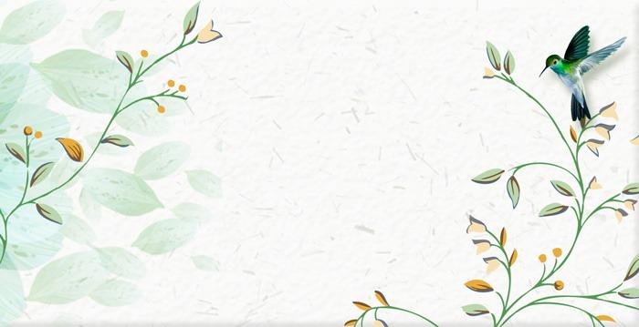 两张水彩花鸟PPT背景图片