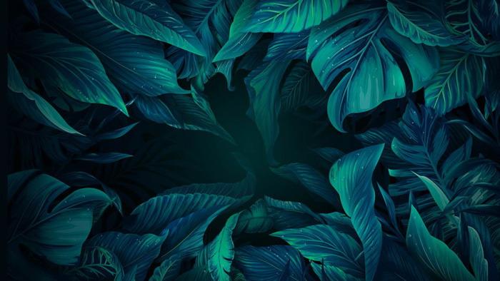 四张精致花卉绿叶PPT背景图片