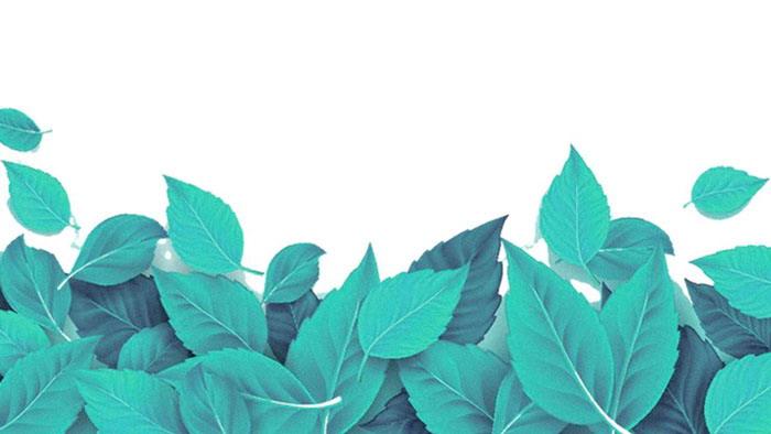 精美绿叶叶子必发88背景图片