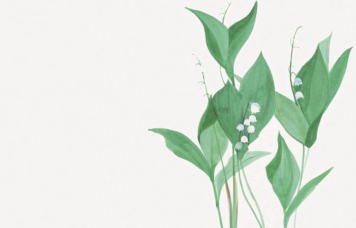 两张清新水彩植物绿叶PPT背景图片