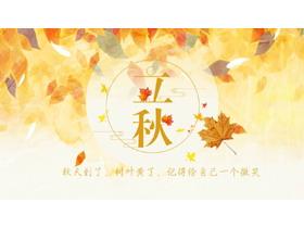 金色叶子背景的立秋必发88模板