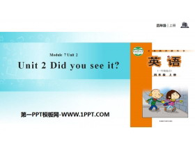 《Did you see it?》PPT