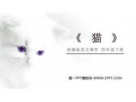 《猫》PPT课件免费下载