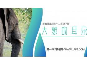 《大象的耳朵》PPT课件免费下载