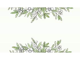 四张水彩绿叶白花植物PPT背景图片