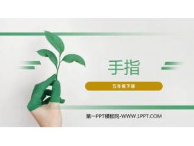《手指》PPT课件下载