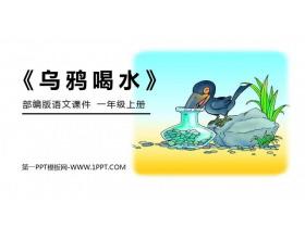 《乌鸦喝水》PPT免费课件