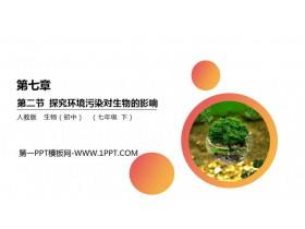 《探究环境污染对生物的影响》PPT精品课件
