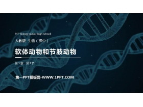 《��w�游锖凸�肢�印馕铩�PPT精品�n件