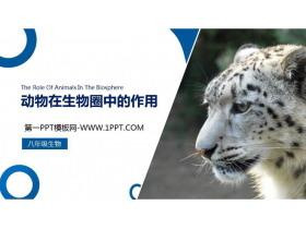 《动物在生物圈中的作用》PPT精品课件