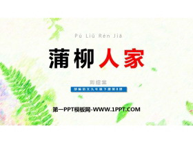 《蒲柳人家》PPT优秀课件下载