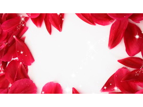红色玫瑰花瓣PPT背景图片