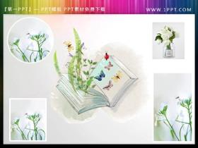 清新绿色植物书籍蝴蝶PPT插图