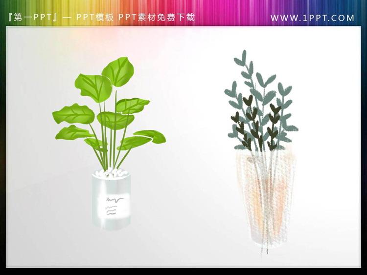 两张绿色盆景PPT素材插图
