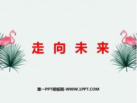 《走向未�怼�PPT�n件