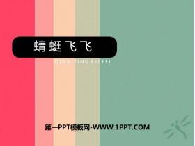 《蜻蜓飞飞》PPT教学课件