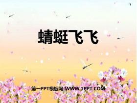 《蜻蜓飞飞》PPT免费课件