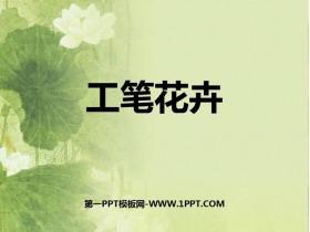 《工�P花卉》PPT免�M�n件