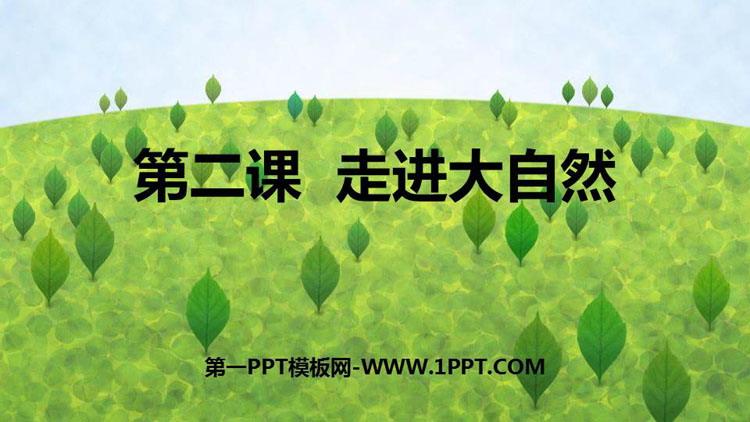 《走进大自然》PPT教学课件