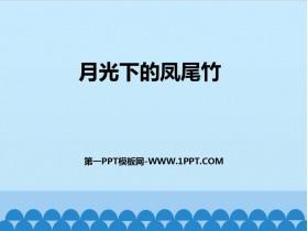 《月光下的凤尾竹》PPT课件下载