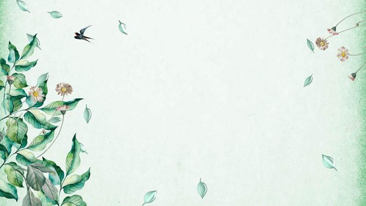 绿色植物叶子背景春天PPT背景图片