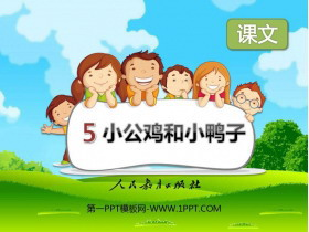《小公鸡和小鸭子》PPT免费课件