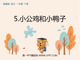 《小公鸡和小鸭子》PPT精品课件