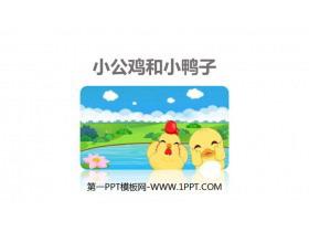 《小公鸡和小鸭子》PPT优质课件