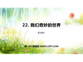 《我��奇妙的世界》PPT�n件(第2�n�r)