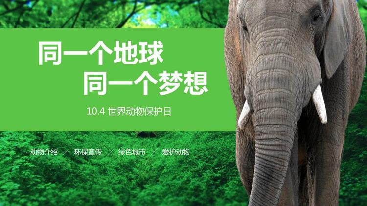 森林大象背景的世界�游锶罩黝}班��PPT模板