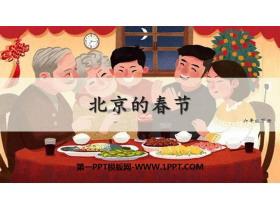 《北京的春节》PPT精品课件