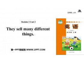 《They sell different things》PPT教�W�n件