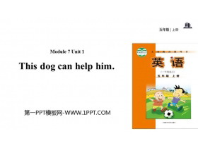 《This dog can help him》PPT教�W�n件