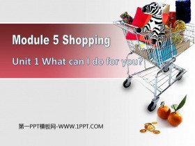 《What can I do for you?》Shopping PPT精品�n件