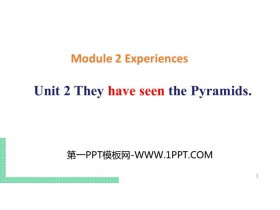《They have seen the Pyramids》Experiences PPT教学课件