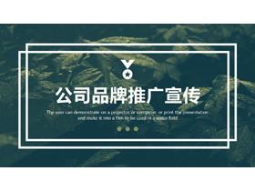 简约绿叶背景的公司品牌宣传推广PPT模板