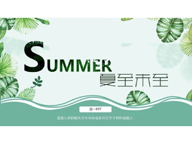 �G色水彩植物�~子背景的夏至主�}PPT模板